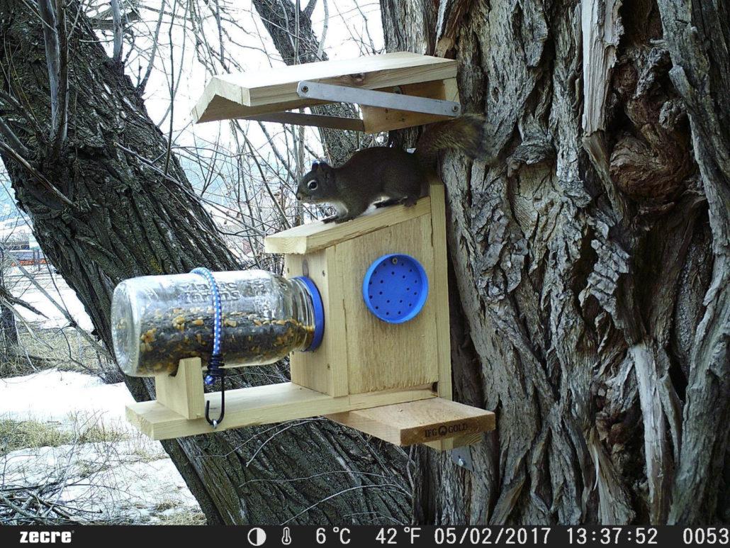zecre trail cameras