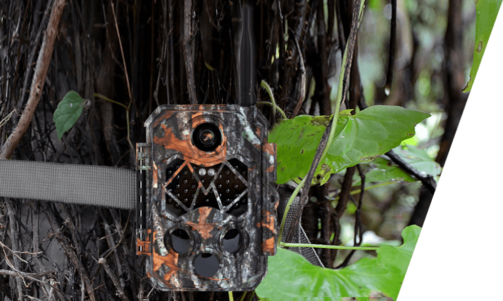 Zecre trail hunting 3G cameras